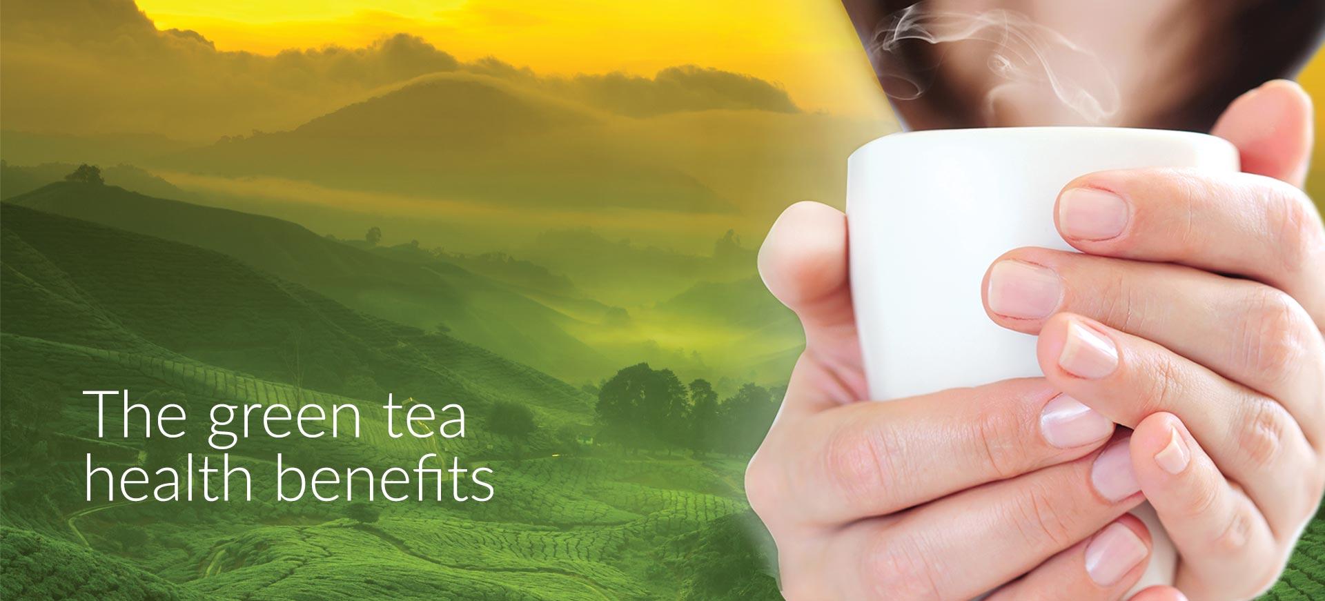 green tea control glucose